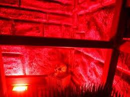 Картинка квест кімнати Індіана Джонс в городе Дніпро